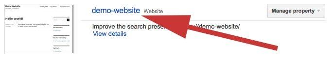 Google Search Console Website