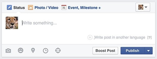 Writing a Facebook Post