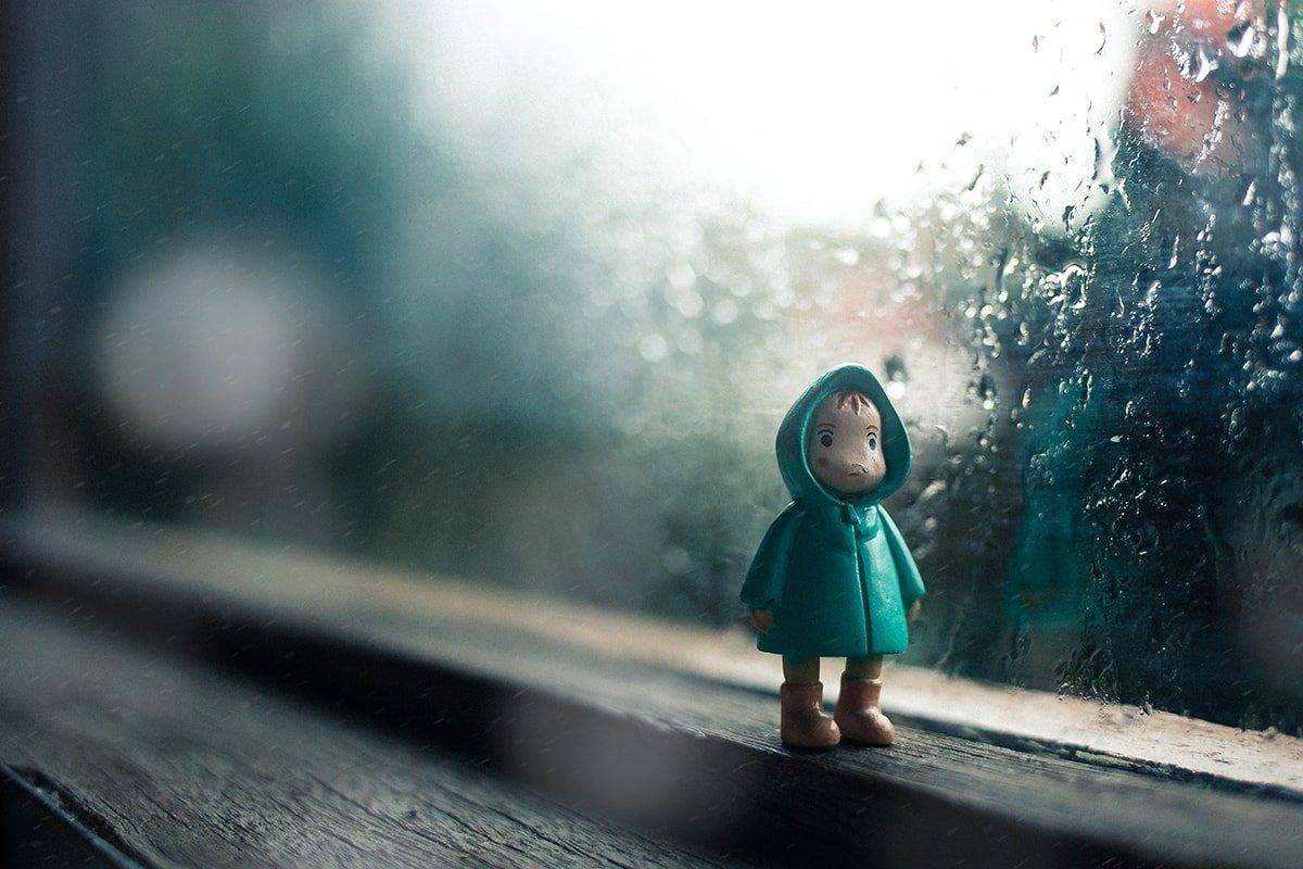 Rain and damp