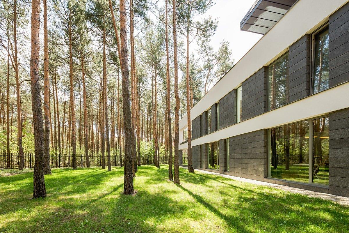 Trees outside modern house
